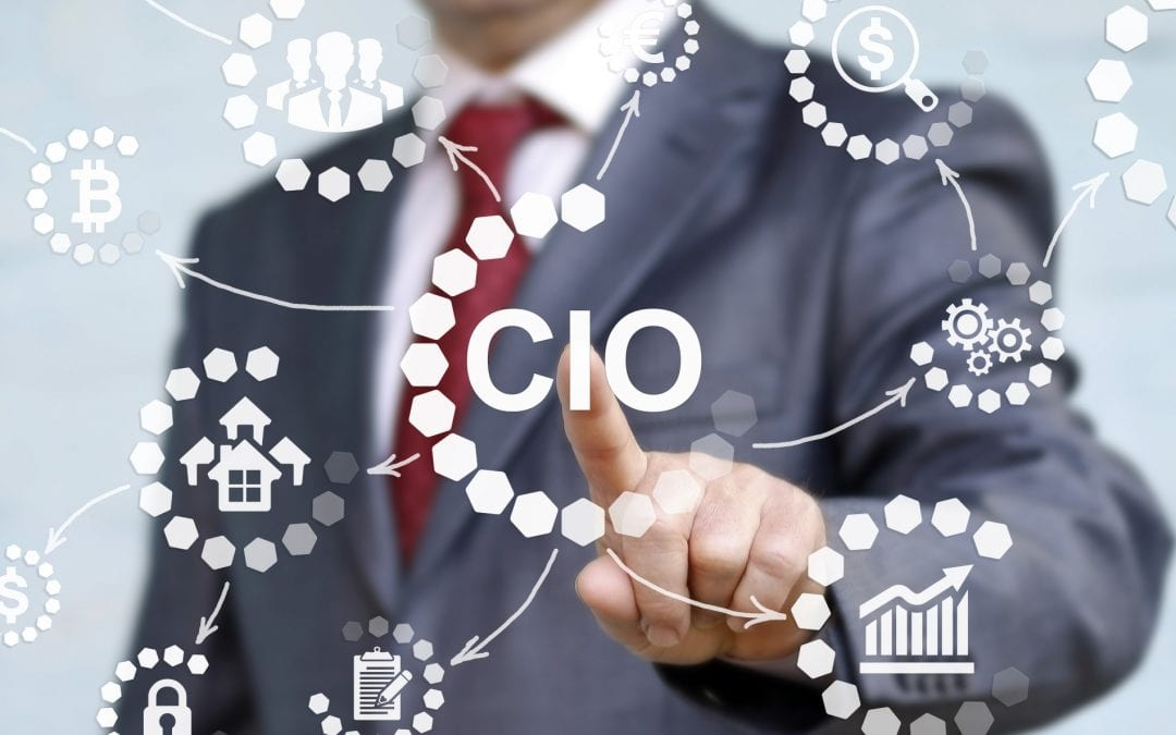 Virtual Chief Information Officer Support